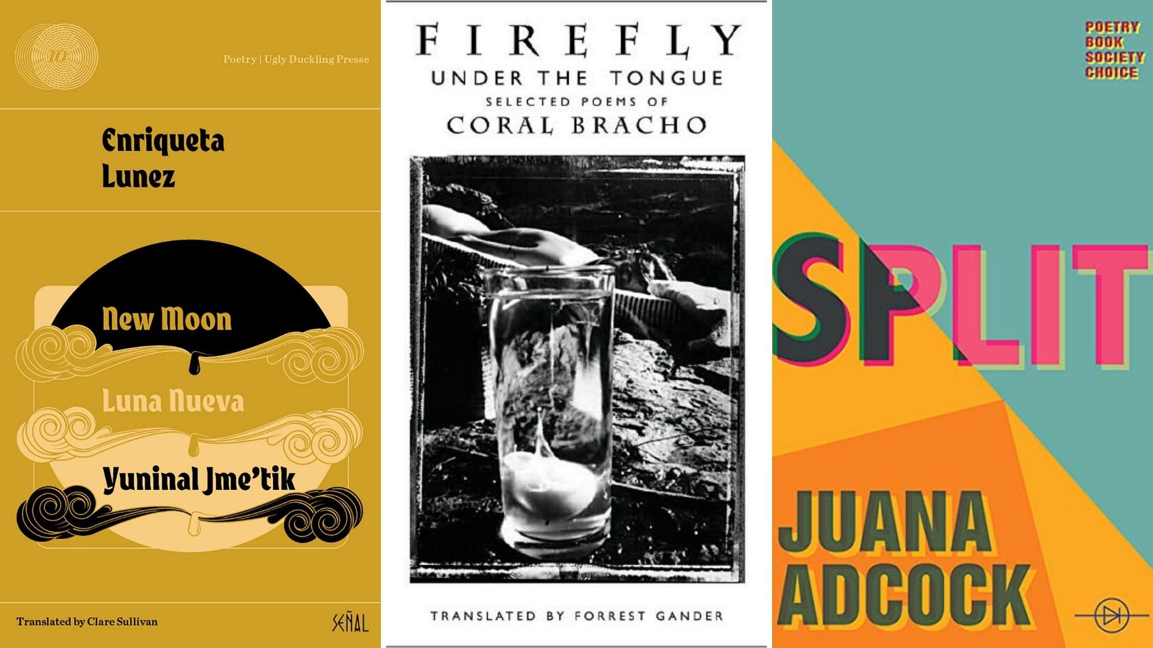 Covers: Firefly, Split, New Moon